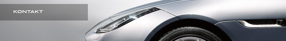 Kontakt Ford GT Kauf