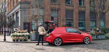 Ford Fiesta Van Rot