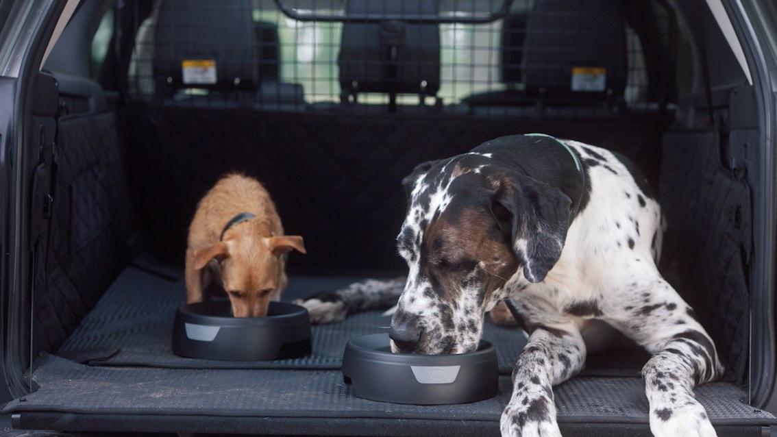 Hunde Wassernapf von Land Rover