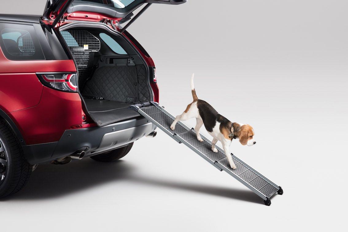 Land Rover Hunde Gehrampe