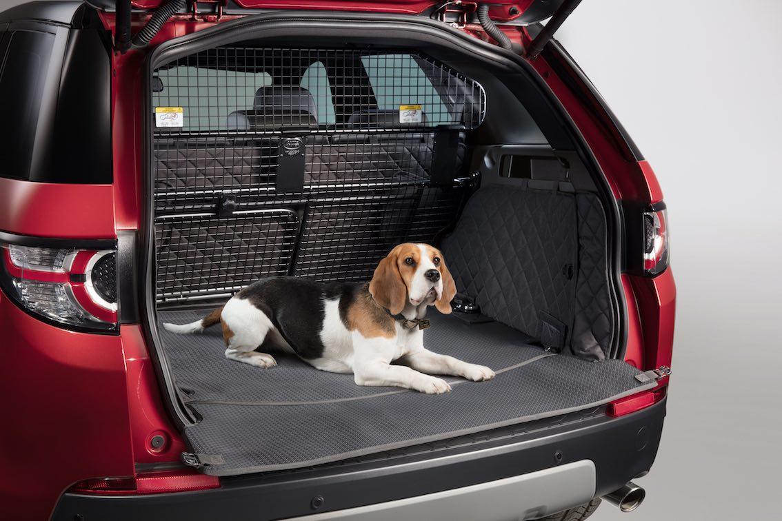 Land Rover Hunde Kofferraumbezug