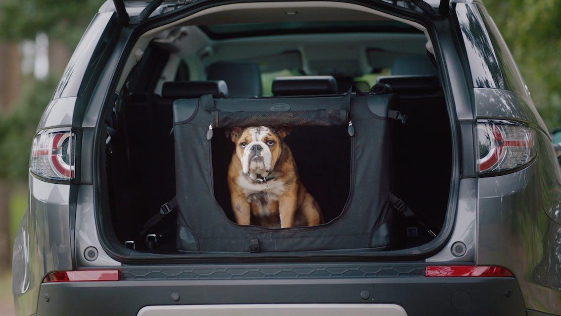 Land Rover Hunde Transportbox Premium