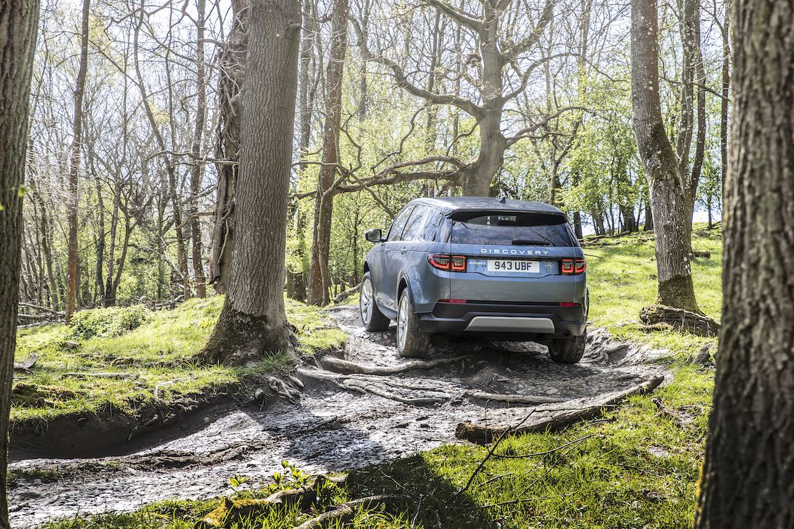 Land Rover Discovery Sport 2020 Heck hinten